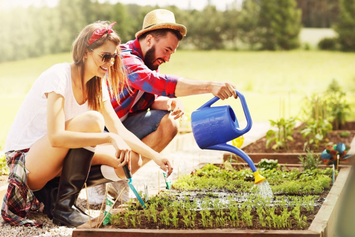 Gardening Tips You Should Make Note Of